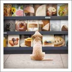wenskaart woodmansterne - hond kijkt naar kookboeken