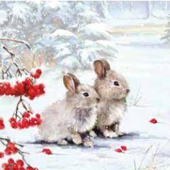5 kerstkaarten woodmansterne - konijntjes in de sneeuw