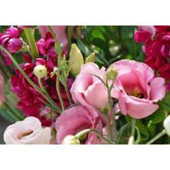ansichtkaart - roze bloemen