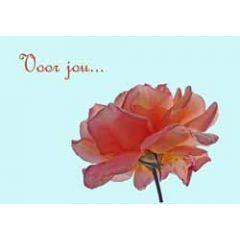 ansichtkaart - voor jou... - roos