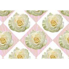 ansichtkaart - witte roos