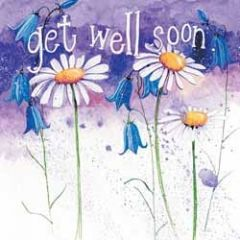 beterschapskaart  - alex clark - get well soon - bloemen