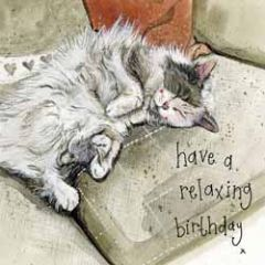 verjaardagskaart alex clark - have a relaxing birthday - slapende kat