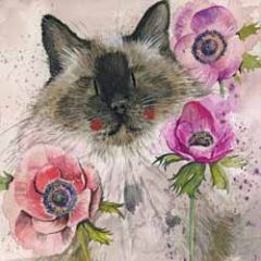 wenskaart alex clark - kat bij bloemen