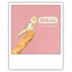 ansichtkaart instagram pickmotion - ohlalal its your day! - parkiet