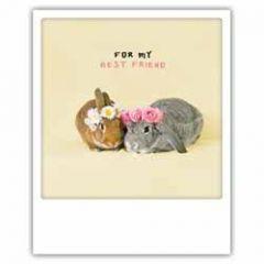 ansichtkaart instagram pickmotion - for my best friend - konijnen