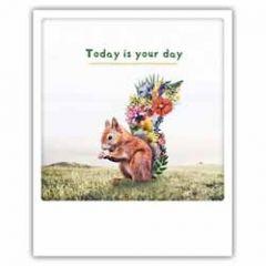 ansichtkaart instagram pickmotion - today is your day - eekhoorn