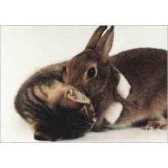 retro ansichtkaart - kitten en konijntje