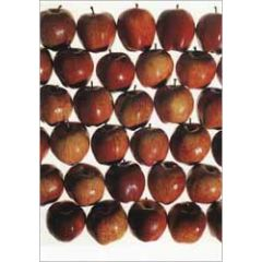 ansichtkaart - appels - keep the doctor away! paul huf