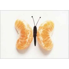 ansichtkaart cintascotch - mandafly - mandarijn en vlinder