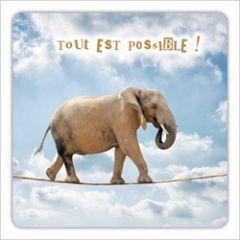 vierkante ansichtkaart met envelop - tout est possible! - olifant