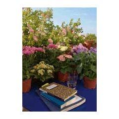 ansichtkaart bildreich - zomerbloemen en boeken
