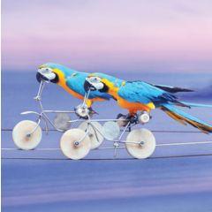 wenskaart second nature - papegaai op fiets