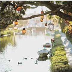 wenskaart second nature - lampjes aan boom en bootjes aan kade