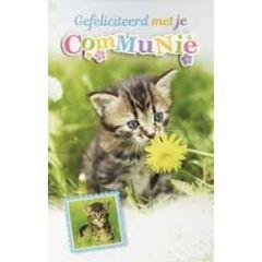 wenskaart - gefeliciteerd met je communie - kitten