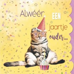 verjaardagskaart cuddles - alweer een jaartje ouder... - kat