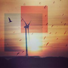 wenskaart claudia muller - windmolen en vogel bij zonsondergang