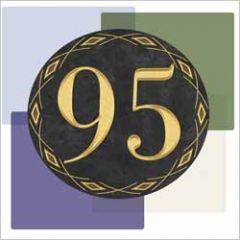 95 jaar - wenskaart muller wenskaarten - vlakken
