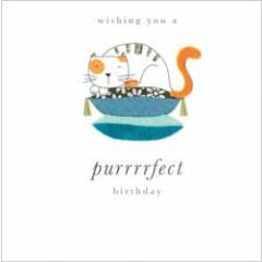 verjaardagskaart - wishing you a purrrrfect birthday - kat