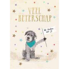 grote beterschapskaart A4 - veel beterschap we denken aan je - hondje