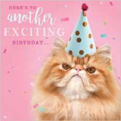 verjaardagskaart rapture - here's to another exciting birthday - boze kat