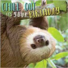 verjaardagskaart rapture - chill out it's your birthday - luiaard
