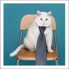 wenskaart woodmansterne - kat met stropdas