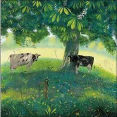 wenskaart woodmansterne - koeien onder kastanjeboom
