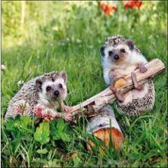wenskaart woodmansterne - egels