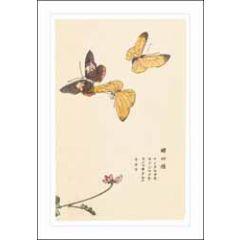 wenskaart ashmolean - vlinders