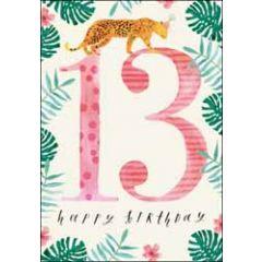 13 jaar - verjaardagskaart woodmansterne - happy birthday - luipaard