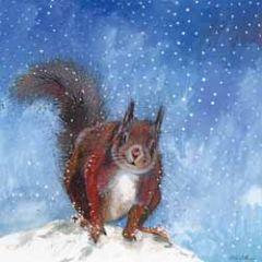 5 kerstkaarten alex clark - eekhoorn