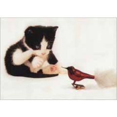 kerst ansichtkaart - kitten ziet vogel