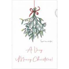 kerstansichtkaart - a very merry christmas