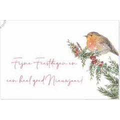 kerstansichtkaart - fijne feestdagen heel goed nieuwjaar! - roodborstje