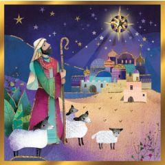 luxe christelijke kerstkaart second nature - herder