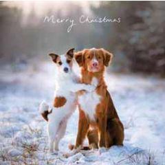luxe kerstkaart woodmansterne - honden in de sneeuw