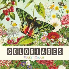 kleurboekje gwenaelle trolez - vlinders