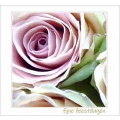 10 kerstkaarten muller wenskaarten - fijne feestdagen - rozen