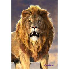 3d ansichtkaart - lenticulaire kaart - leeuw