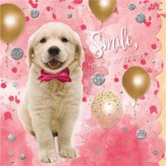 verjaardagskaart cuddles - smile het is je verjaardag - hondje