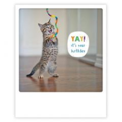 ansichtkaart instagram pickmotion - yay it's your birthday - kat