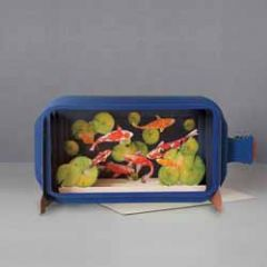 3D pop up wenskaart - message in a bottle - vissen koikarper