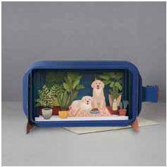 3D pop up wenskaart - message in a bottle - honden en planten | muller wenskaarten