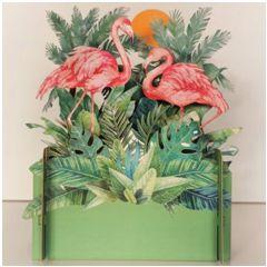 3d pop-up kaart miniature greetings - flamingo | muller wenskaarten