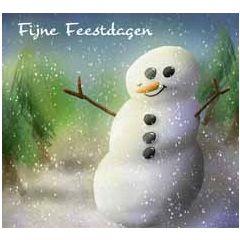 10 kerstkaarten muller wenskaarten - fijne feestdagen - sneeuwpop