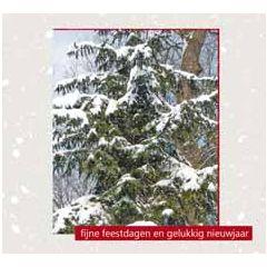 10 kerstkaarten muller wenskaarten - fijne feestdagen gelukkig nieuwjaar - dennenboom met sneeuw