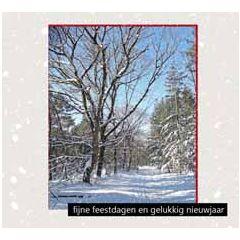 10 kerstkaarten muller wenskaarten - fijne feestdagen gelukkig nieuwjaar - bos in de sneeuw