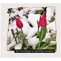 10 kerstkaarten muller wenskaarten - fijne feestdagen gelukkig nieuwjaar - tulpen in de sneeuw