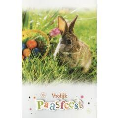 paaskaart - vrolijk paasfeest - konijn in het gras-2